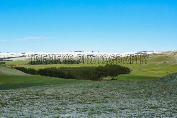 TBS-0088.jpg - Trewey's Photography