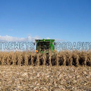 TBS-0191.jpg - Trewey's Photography