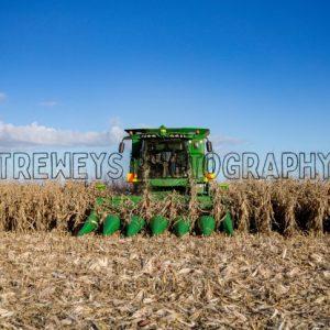 TBS-0192.jpg - Trewey's Photography