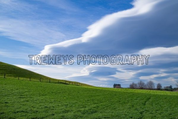 TBS-0301.jpg - Trewey's Photography