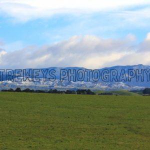 TBS-0348.jpg - Trewey's Photography
