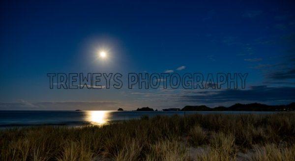 TBS-680.jpg - Trewey's Photography